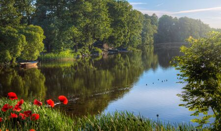 Pre-sunset photo of lakeside landscape with lush trees, red poppy flowers and boats on the shore. Taken in the Mazury region of Poland.