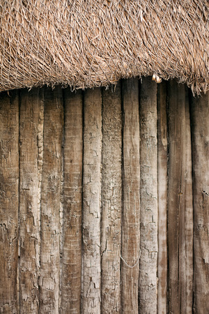 dried out detail of straw beach hut