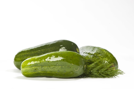 Whole pickles on white background.
