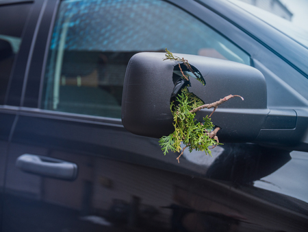 Damaged Truck mirror with branch trapped inside
