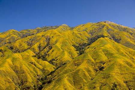 Yellow mountain in Big Sur, California.