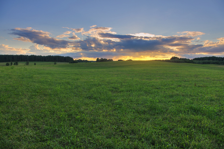 Green pasture with forest on the horizon. Grassy field at sunset. Stock fotó