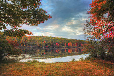 Beautiful Autumn lakeside landscape