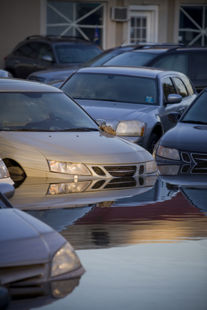 flooded vehicles after a natural disaster.