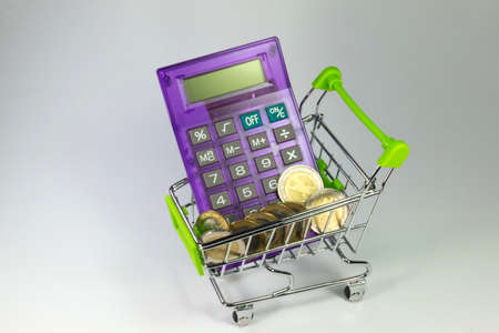 household money: Shopping Cart and a calculator