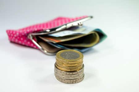 bolsa dinero: Una carpeta con el dinero de bolsillo Foto de archivo