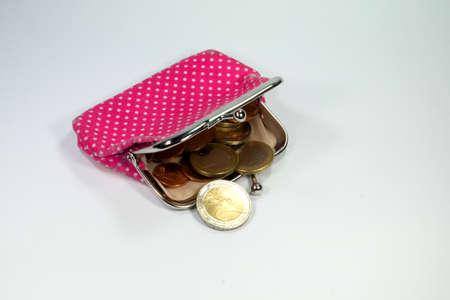bolsa dinero: Carpeta con el dinero de bolsillo Foto de archivo