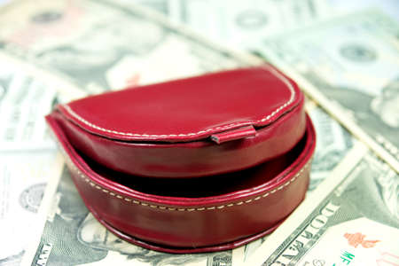 purchasing power: Purse and money