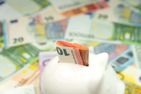 budgetary: Piggy bank and many euro bills