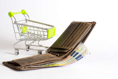 budgetary: A change purse, euro money and a shopping cart