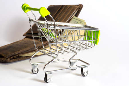 household money: A shopping cart, change purse and a lot of euro banknotes