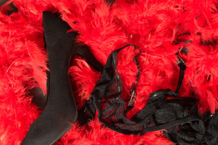 High heels and lingerie on a pad on red feathers