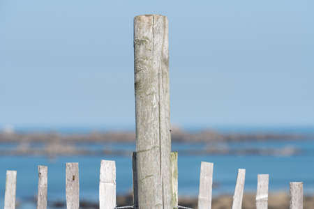 A fence on the beach somewhere by the sea