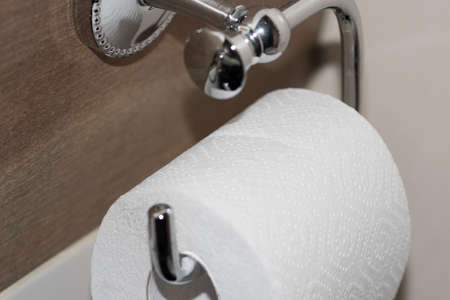 A roll of toilet paper in the toilet Stock Photo