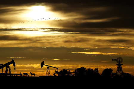 Oil fields and a landscape