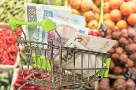 Shopping cart, Polish zloty and groceries