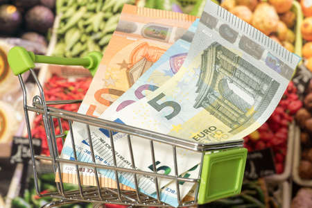 Shopping cart, Euro money and food