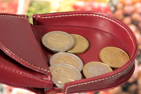Purse, Euro coins and food