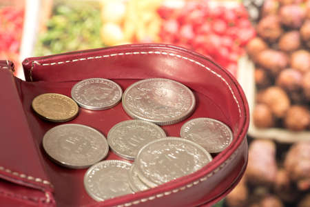 Purse, coins Swiss francs and food