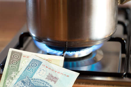 Money Polish zloty PLN, a pot and price for gas