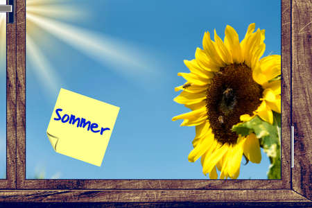 A sunflower and note summer