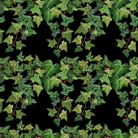 Watercolor seamless botanical ivy illustration. Botanical seamless pattern from ivy twig. Hand painted green ivy leaves, black background. Foto de archivo
