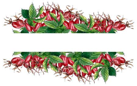 Cornice floreale con rosa selvatica rosa, rosa canina, rosa canina, foglie verdi e bacche rosse, bordo acquerello disegnato a mano isolato su bianco. Design per invito, matrimonio o biglietti di auguri