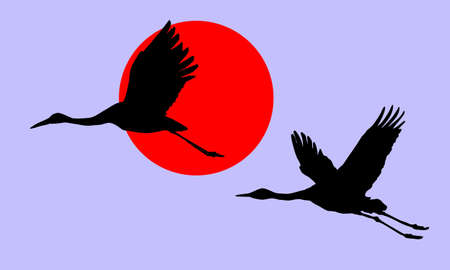 vector illustration of the cranes in sky on background red sun Vector