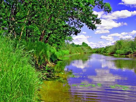 riverside herb   photo