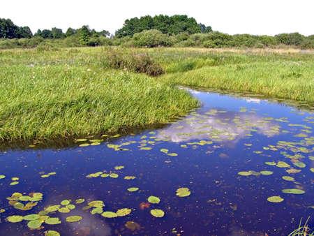 small river amongst field    Stock Photo - 5962648