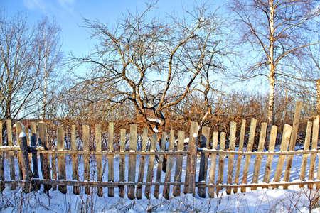 old fence in winter garden photo