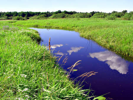 small river on field     photo