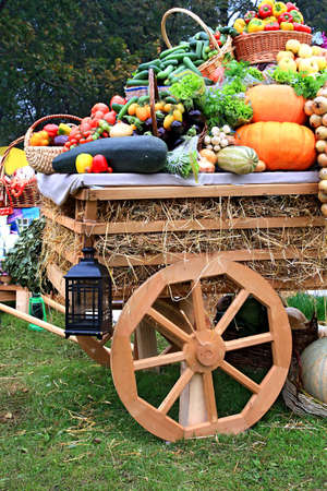 cart with vegetable photo