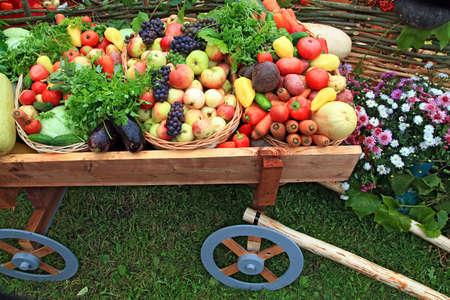vegetables in cart on fair  photo