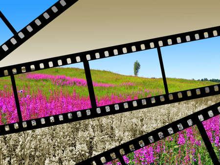 pellicola fotocamera Archivio Fotografico