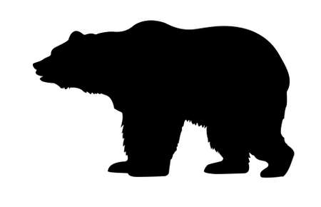 grizzly:  silhouette bear isolated on white background