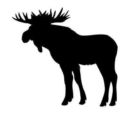 moose: silhouette moose isolated on white background