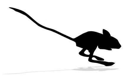 silhouettes of the jerboa on white background Vector