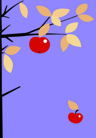 apple on branch of the apple trees Vector