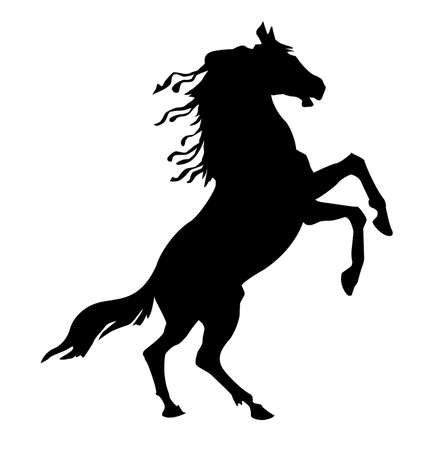 rythme:  cheval de silhouette sur fond blanc