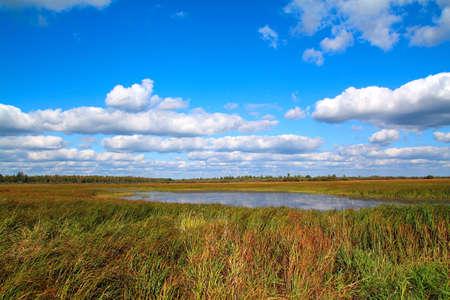 small lake on field Stock Photo - 6844689
