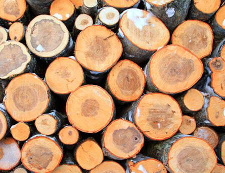 sawed: firewood aheap