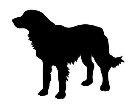 illustration of the rambling dog on white background