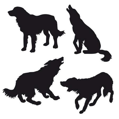 homelessness: silhouette del cane su sfondo bianco  Vettoriali