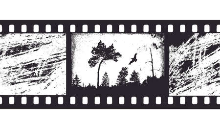black and white photography: camera film Illustration