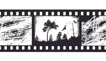 black and white photography: camera film Illustration