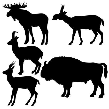 silhouettes of the wildlifes on white background Vector