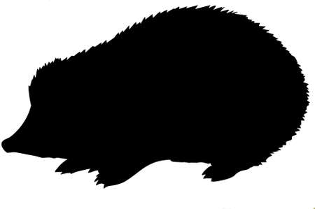silhouette of the hedgehog on white background Stock Vector - 7038305