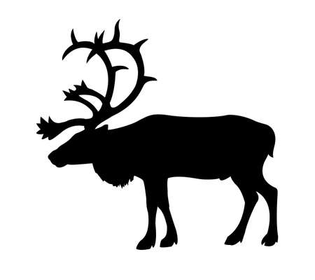 silhouette of the reindeer on white background Stock Vector - 7038237