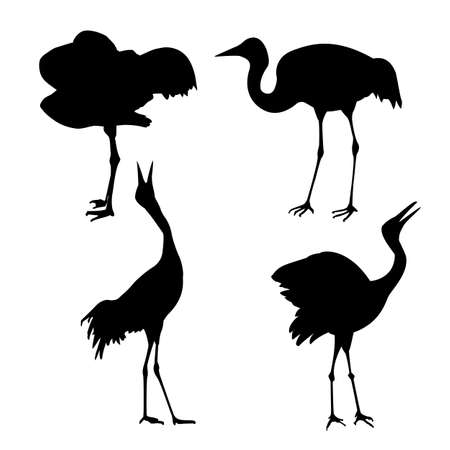 silhouette of the cranes on white background Vector